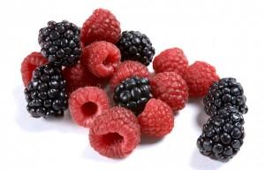 raspberry + blackberry small