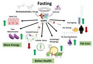 Fasting Safely Leeds