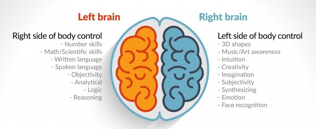 dr sara right and left brain
