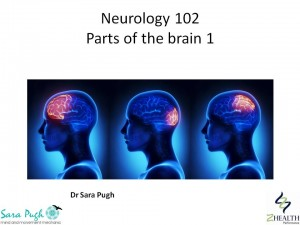 Neurology 102