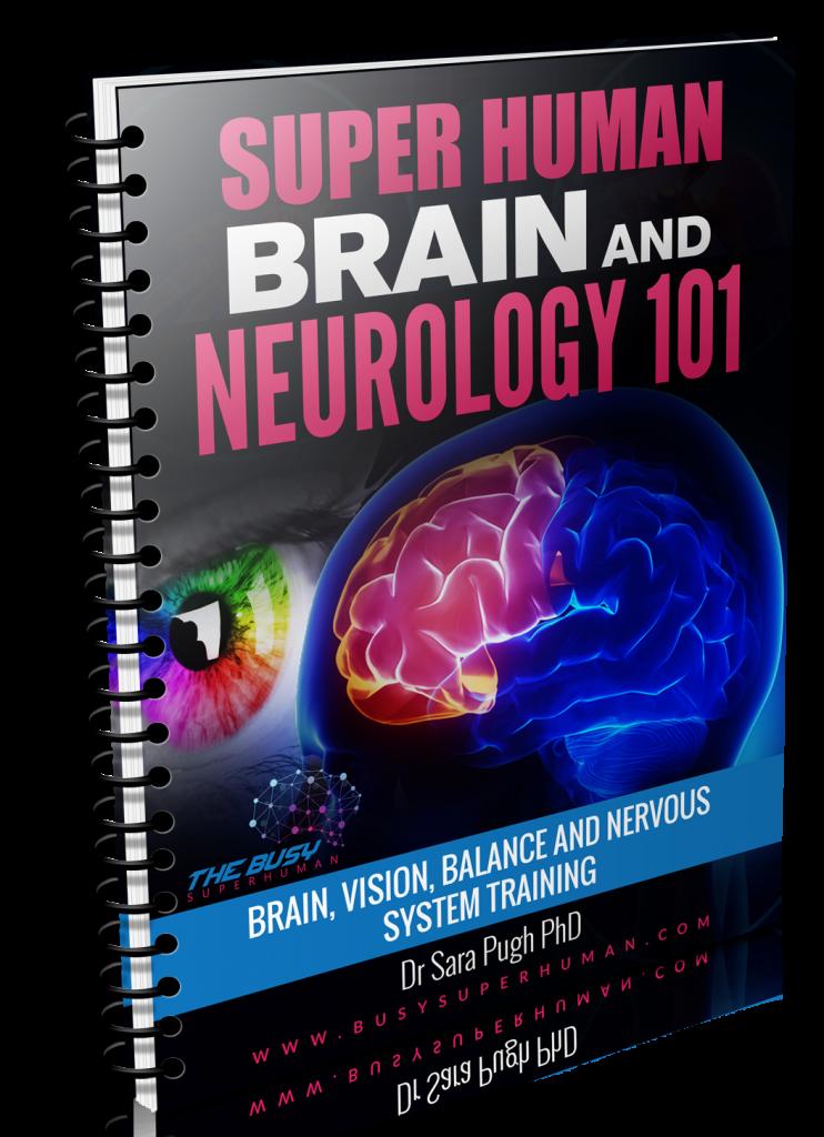 neurology 101